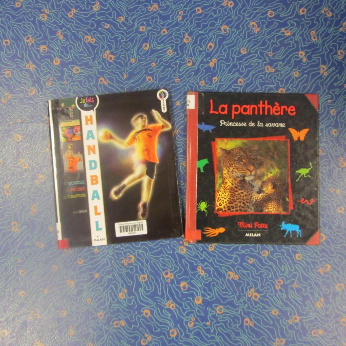 Les_CP_à_la_bibliothèque3